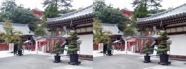 中山寺⑫(交差法)