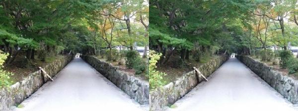 興聖寺琴坂(平行法)
