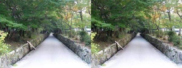 興聖寺琴坂(交差法)