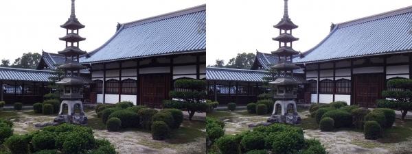 興聖寺庭園②(平行法)