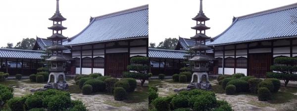 興聖寺庭園②(交差法)