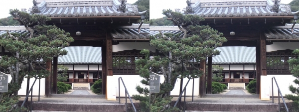 興聖寺薬医門②(平行法)