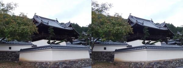 興聖寺楼門②(平行法)