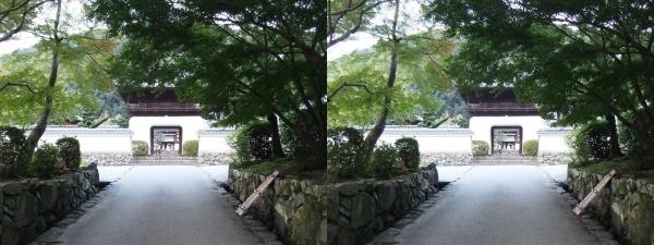 興聖寺琴坂と楼門(平行法)