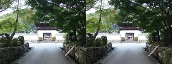 興聖寺琴坂と楼門(交差法)