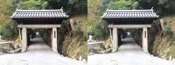 興聖寺表門(平行法)