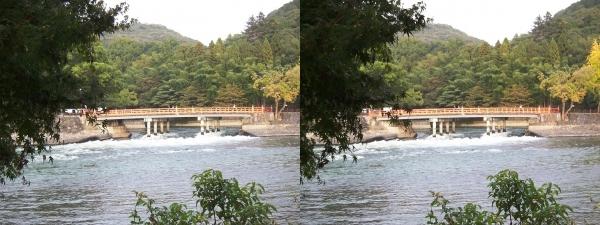 観流橋(交差法)