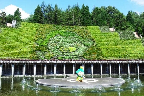 宇治市植物公園 タペストリー立体花壇『チャチャ王国のおうじちゃま』