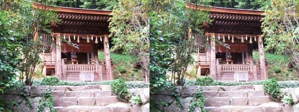 宇治上神社⑥(平行法)