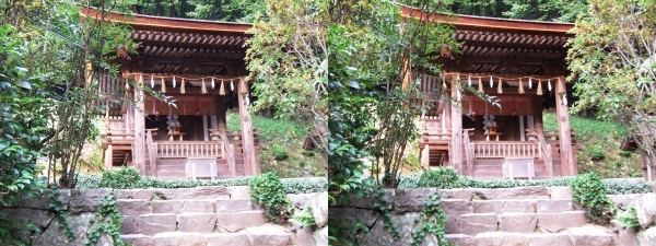 宇治上神社⑥(交差法)