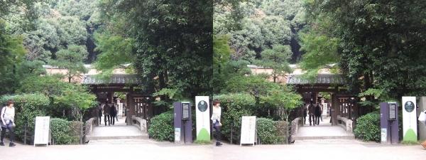 宇治上神社②(交差法)