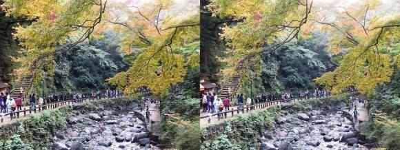 箕面滝道②(平行法)