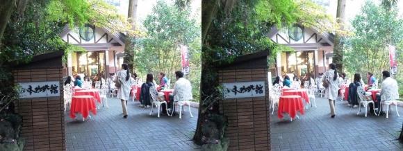 山本珈琲館(平行法)