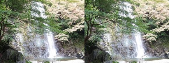 箕面大滝④(平行法)