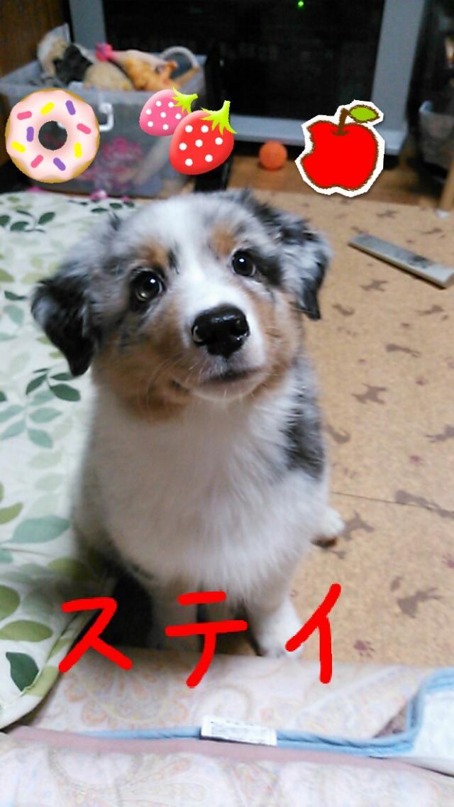 rakugaki_20130823_0023_convert_20130825185536.jpg