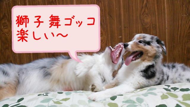 rakugaki_20130823_0024_convert_20130825185600.jpg