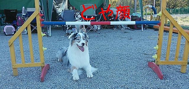 rakugaki_20130929_0040_convert_20131003004759.jpg