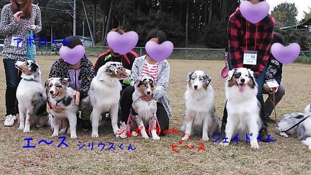 rakugaki_20131111_0044_convert_20131113211549.jpg