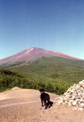 富士山20003
