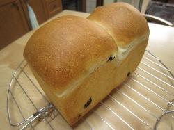 レーズン食パン 2013-5-23-2