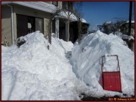 tnH26-02-09雪 (2)_1