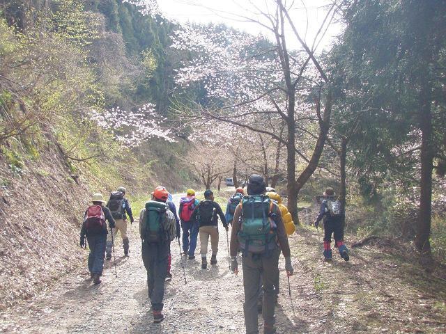 登山口手前の林道歩き
