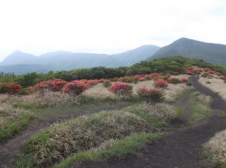 鍋割山への道左から鈴ヶ岳鍬柄山地蔵岳荒山