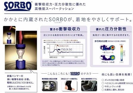 ソルボの効果 (640x445)