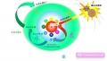 地球と生命の誕生
