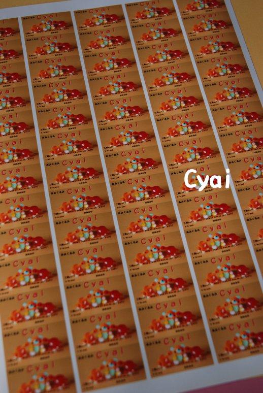 cyai20-1.jpg