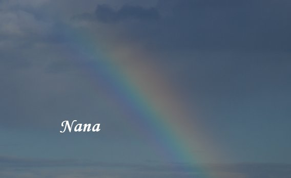 rainbow21-1.jpg