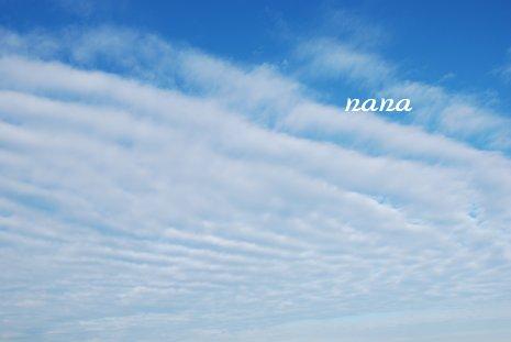 sky20-33.jpg