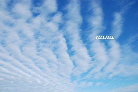 sky20-35.jpg