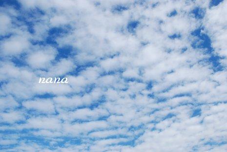 sky20-36.jpg