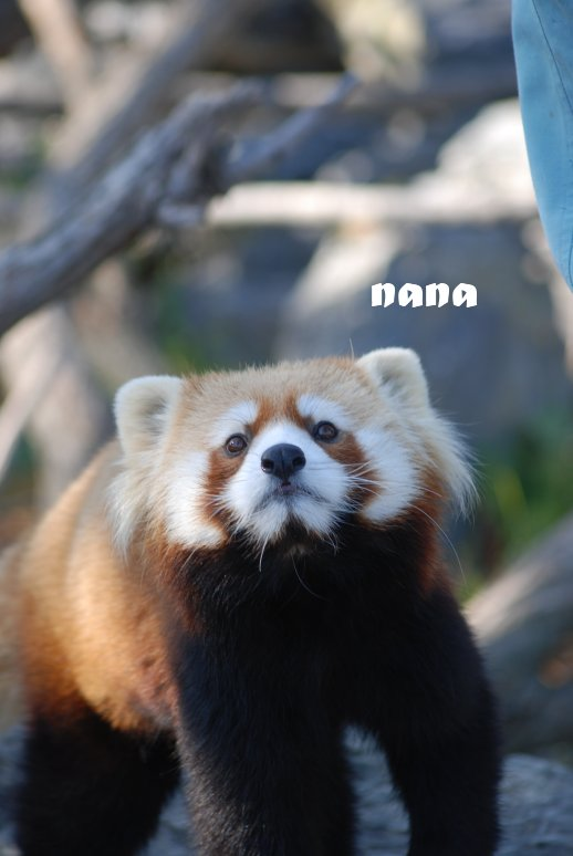 zoo20-34.jpg
