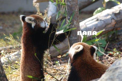 zoo20-36.jpg