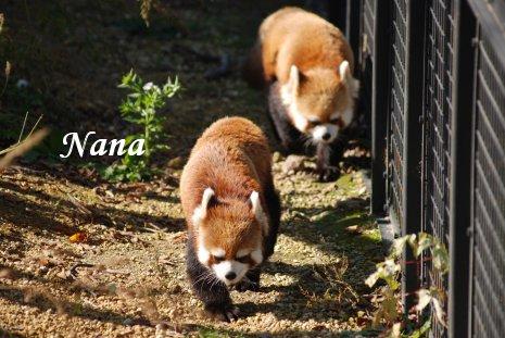 zoo20-45.jpg