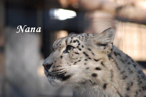 zoo20-46.jpg