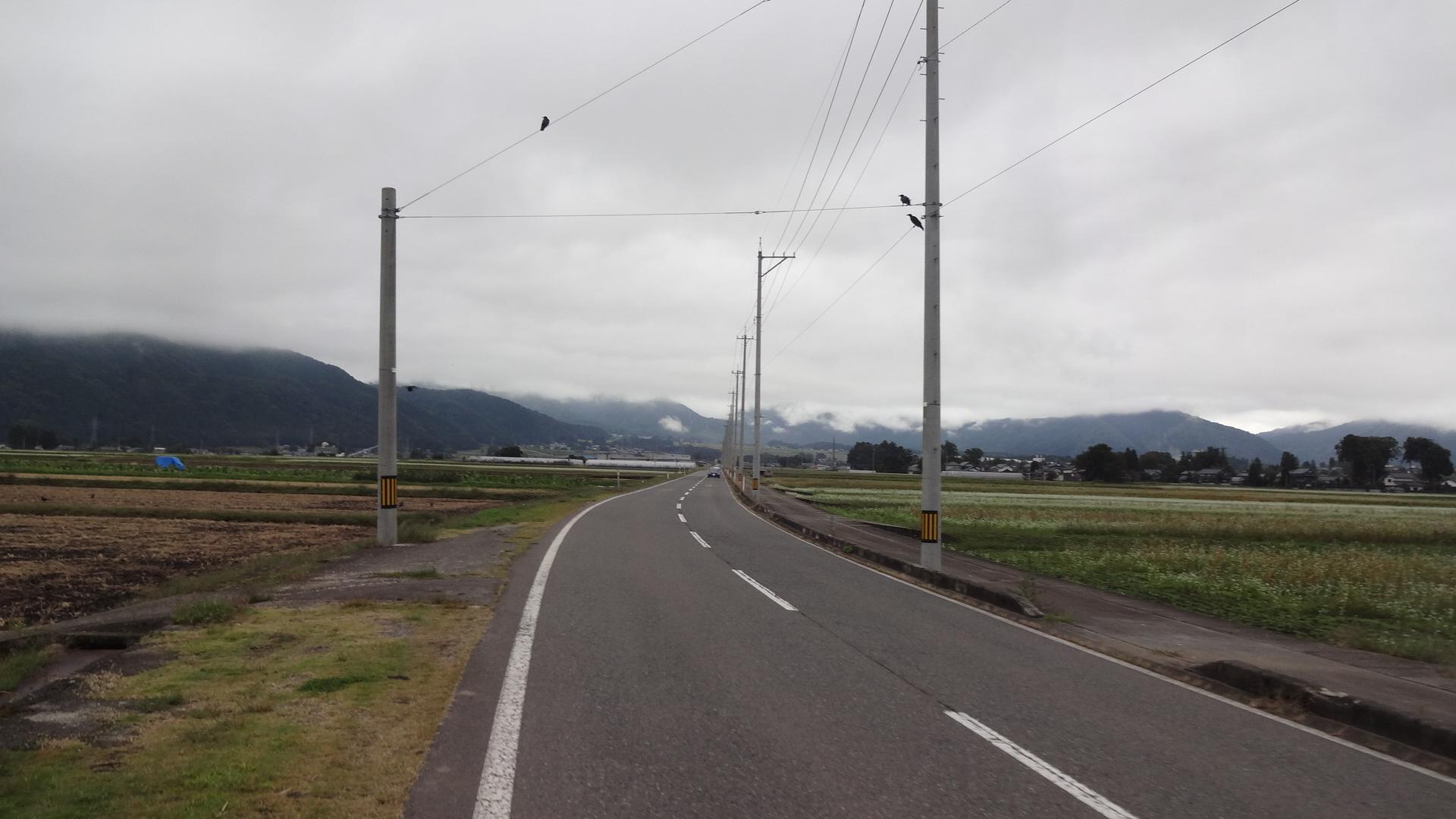 ビューポイントまでの山道