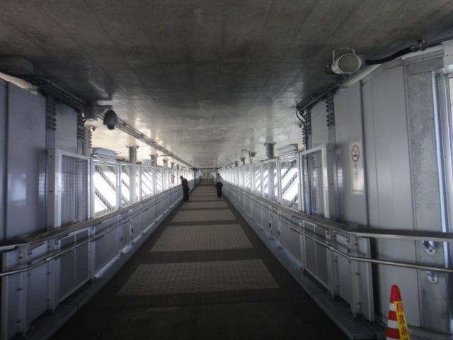 橋の下の遊歩道
