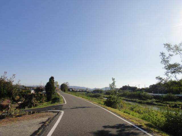 矢田川堤防