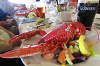 lobsterinismor0813