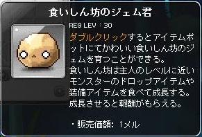 Maple130927_100217.jpg