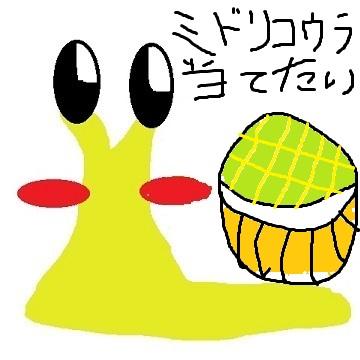 (コウラ)マインちゃん