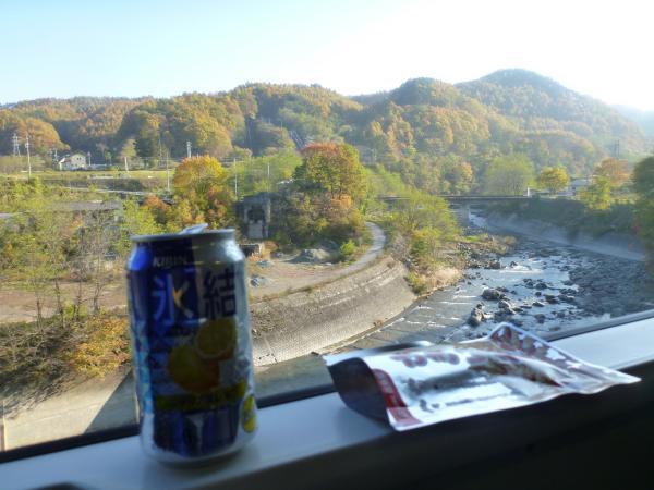 電車からの紅葉(2)