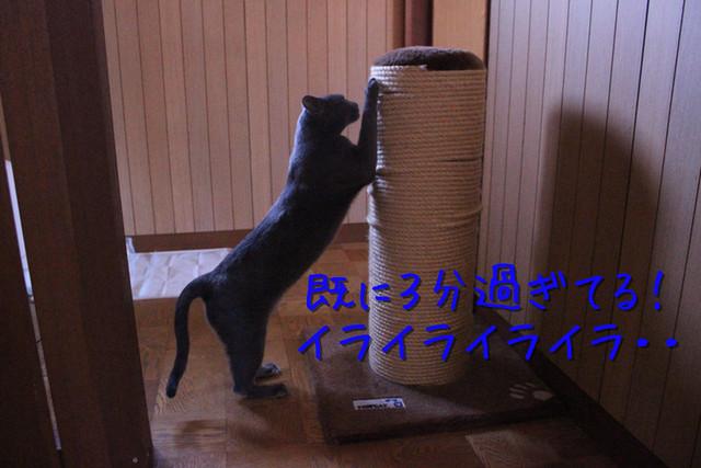 kako-K6rjVMopdIapsE4T.jpg