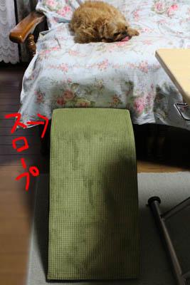 0022-asi-20.jpg