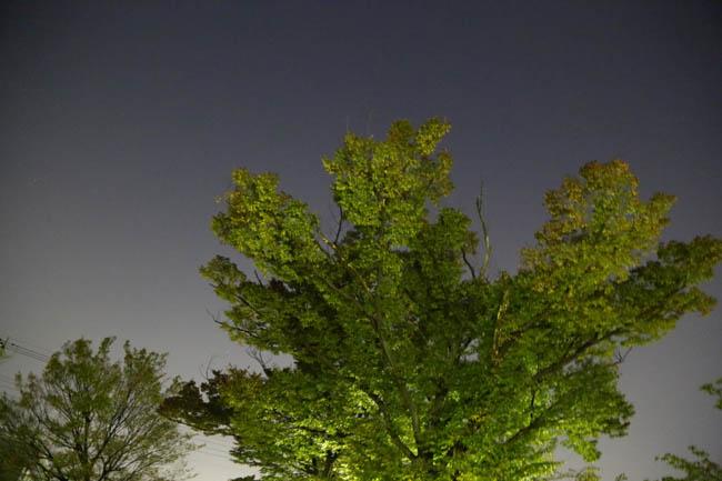 020-sui-8.jpg