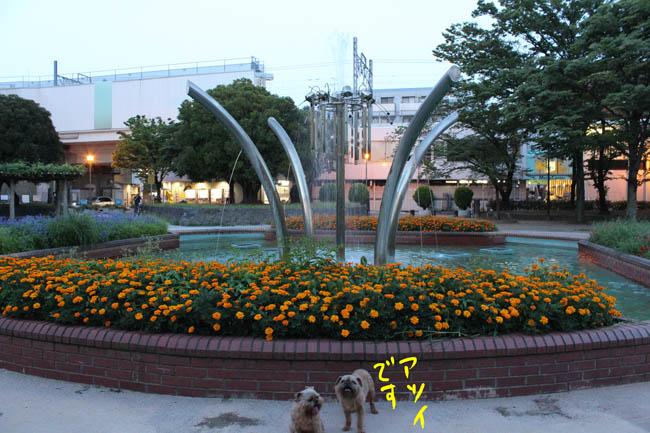 035-mizu-6.jpg
