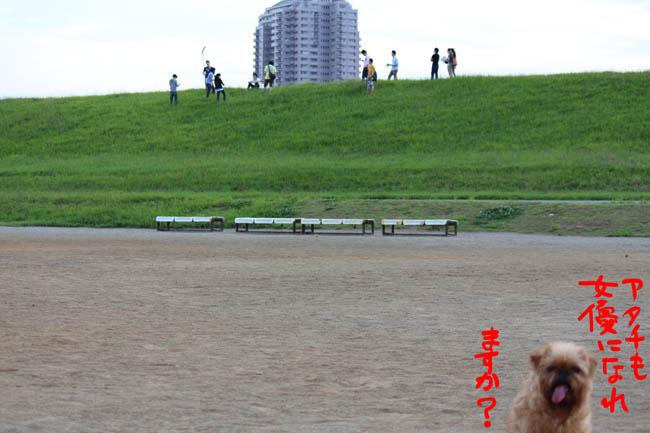 045-jyoyu-6.jpg